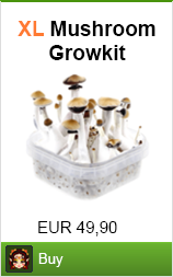 buy magic mushroom growkit